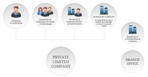 Options for Corporate Structures in Singapore