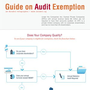 Audit Exemption Guide for Singapore Companies