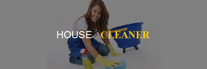 home-based-business-house-cleaner
