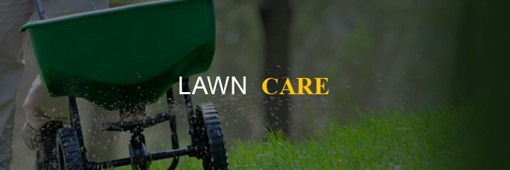 home-based-business-lawn-care