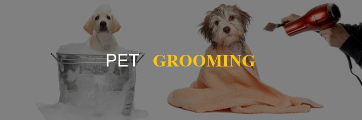 home-based-business-pet-grooming